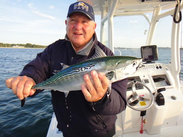 Marlborough ma the fly fishing show for Fish marlborough ma