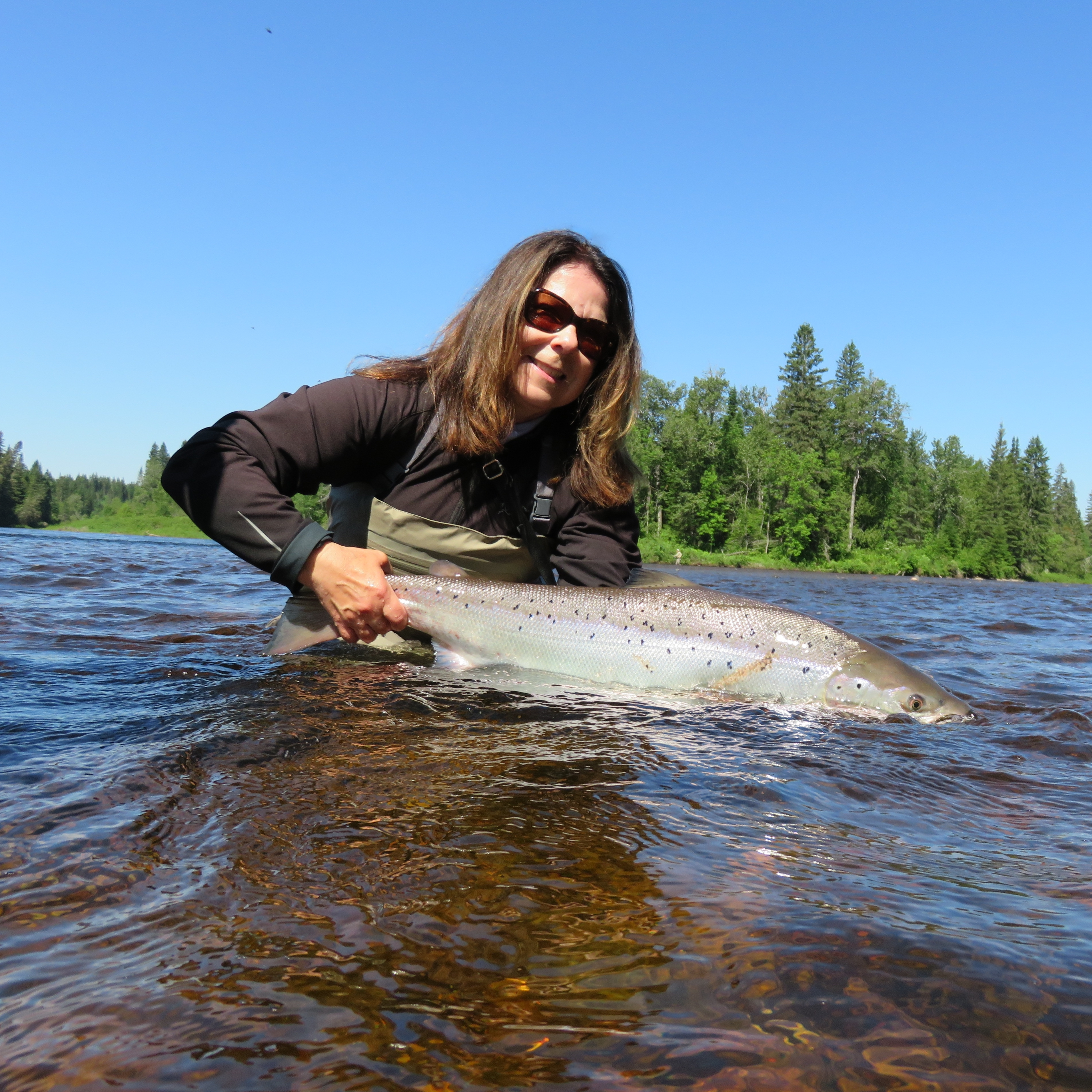 Women s showcase the fly fishing show for Fly fishing shows
